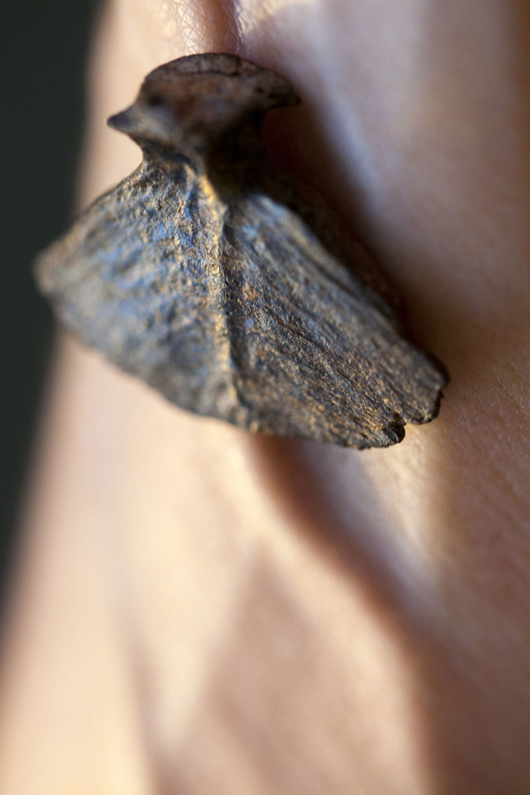 fossilized-fish-caudal-vertebra-on-wrist