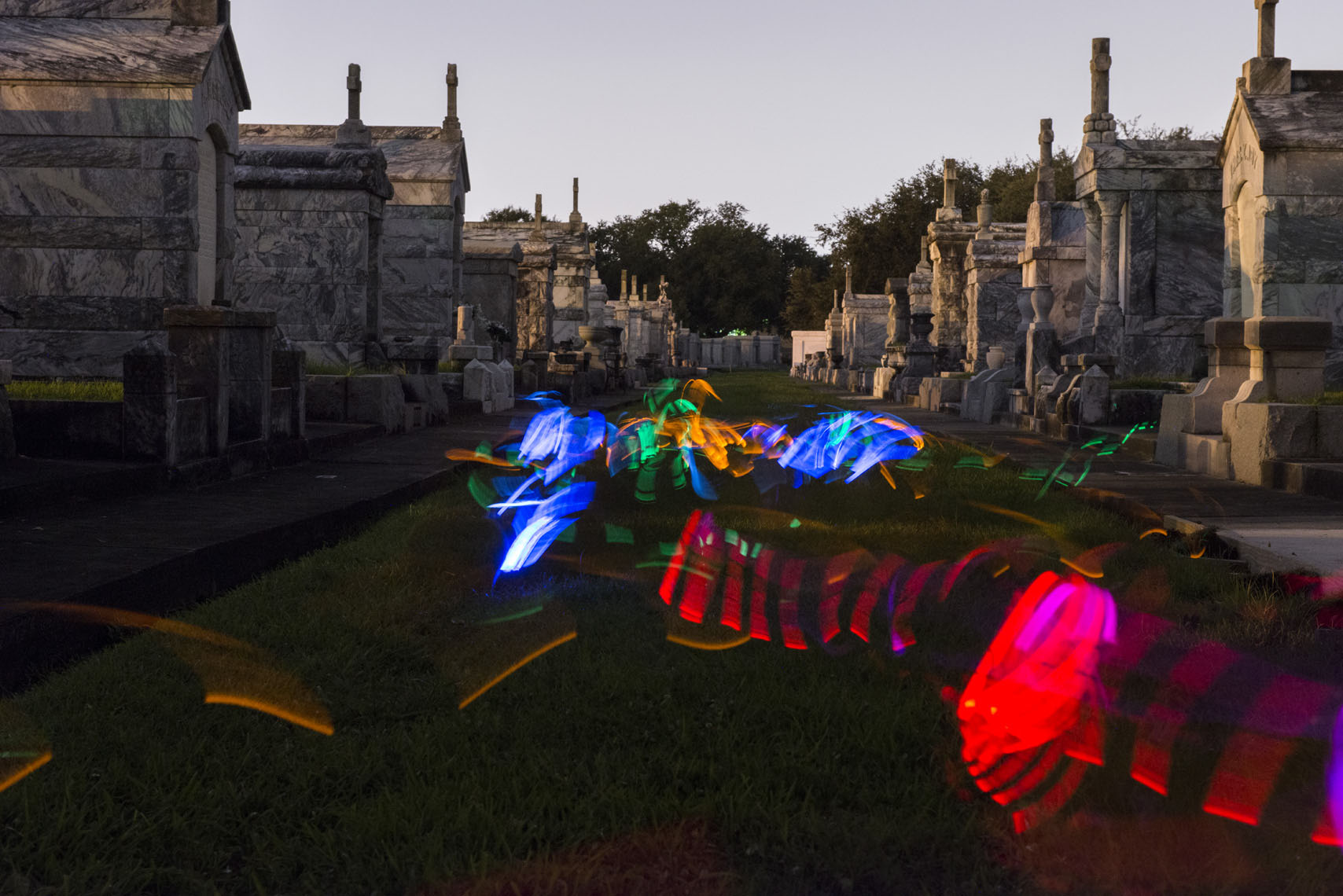 happy-dogs-playing-in-a-New-Orleans-cemetery-at-night