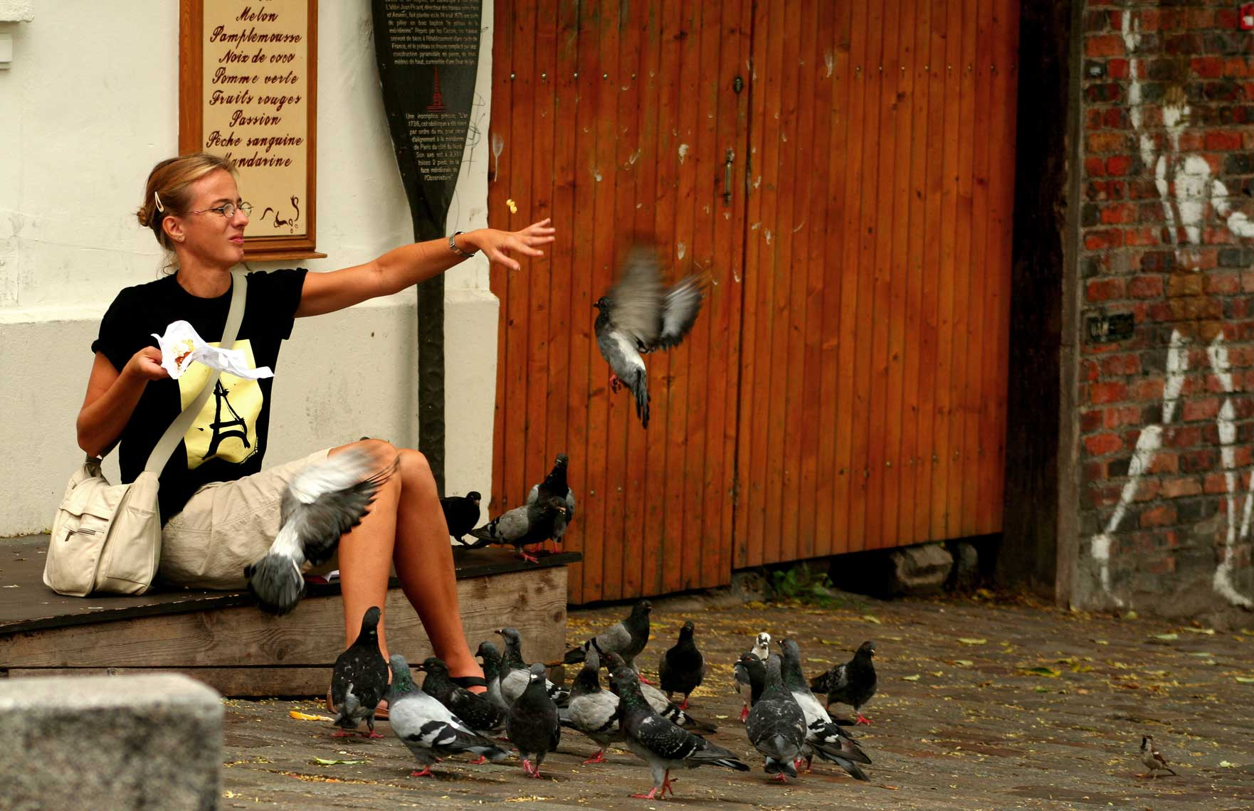 pesty-pigeons-of-paris